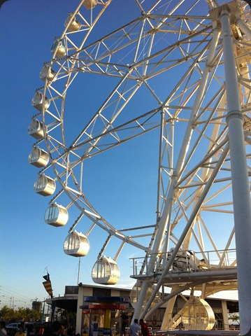 MOA Eye Closer